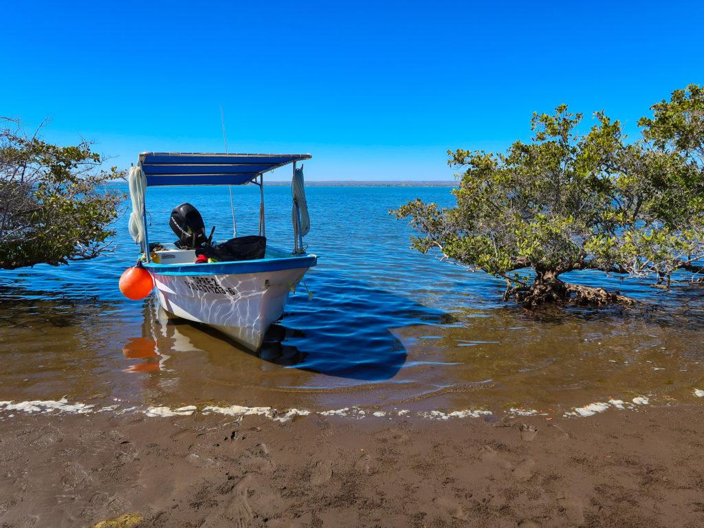 Baja California Sur, México