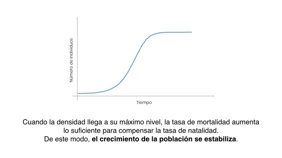 Diapo Previsión ES.005