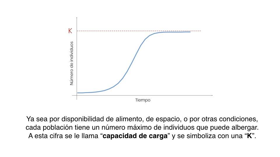Diapo Previsión ES.006