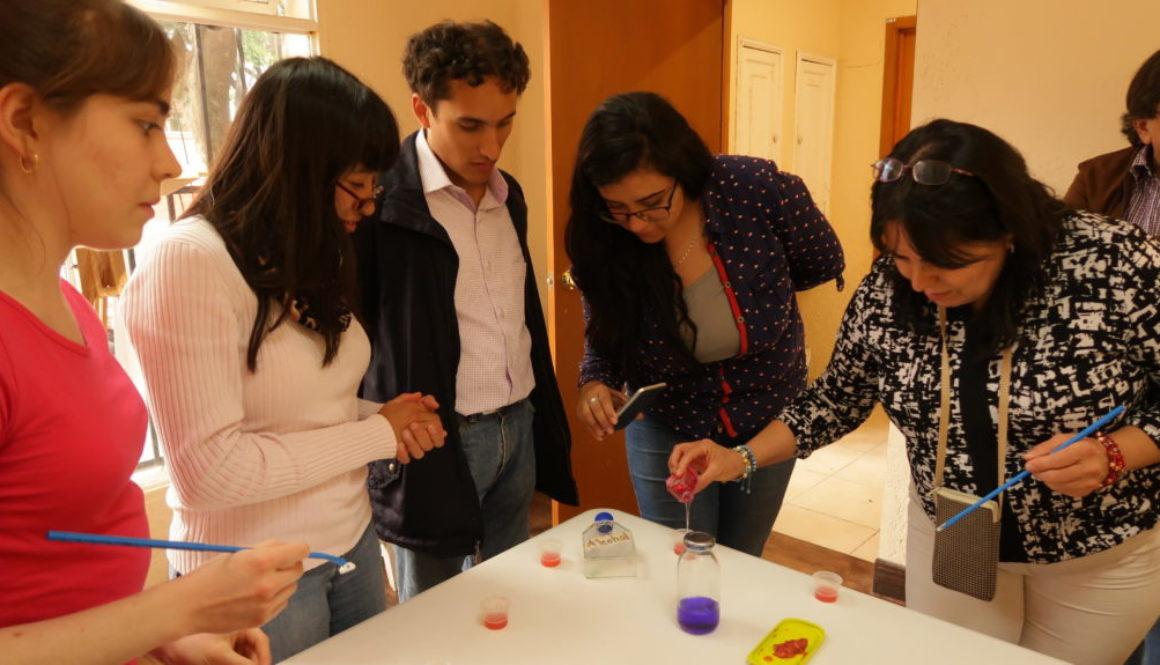 """Extracción de ADN de fresas en un taller organizado en la Ciudad de México por la Asociación """"ADN: Aprende y descubre la naturaleza""""."""