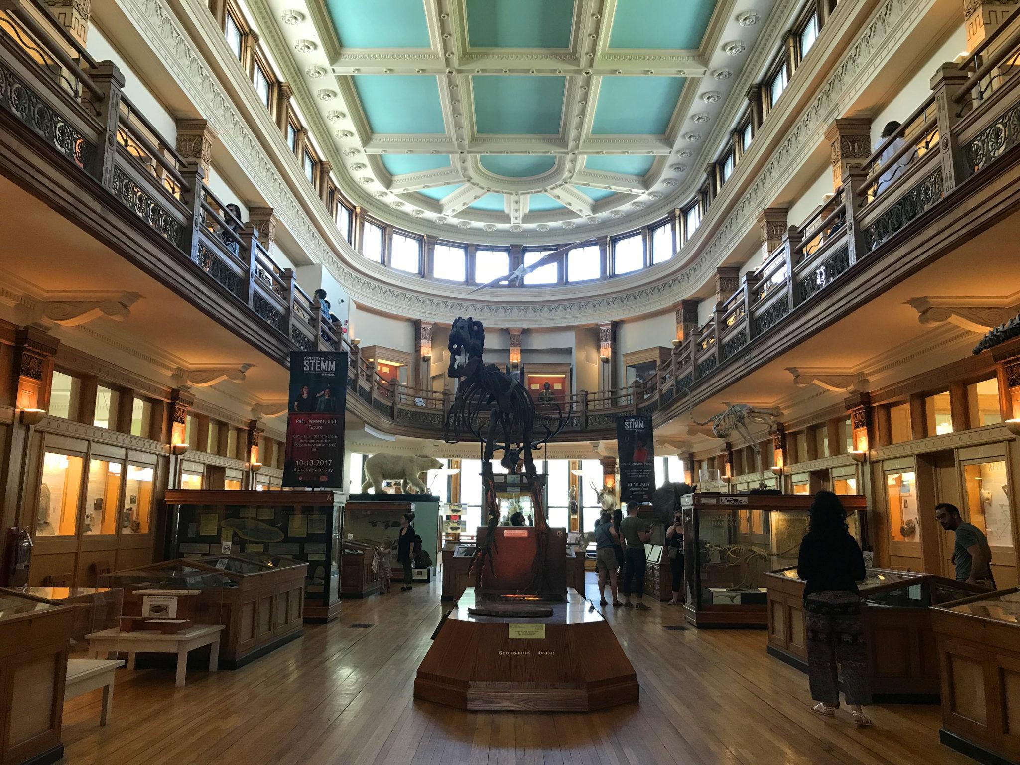 """Museo de historia natural """"Redpath"""" en el centro de Montreal, Quebec."""