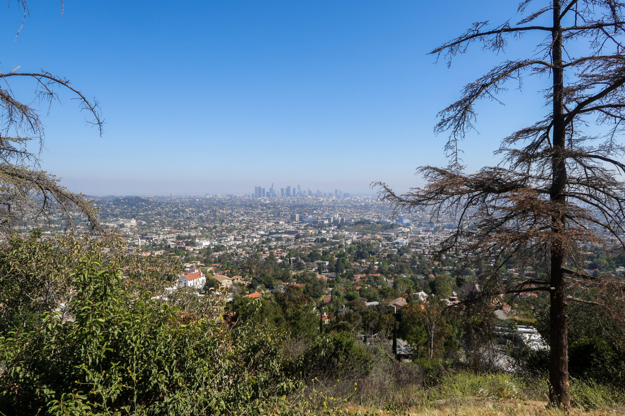 Los Ángeles, vista desde el Parque Griffith.