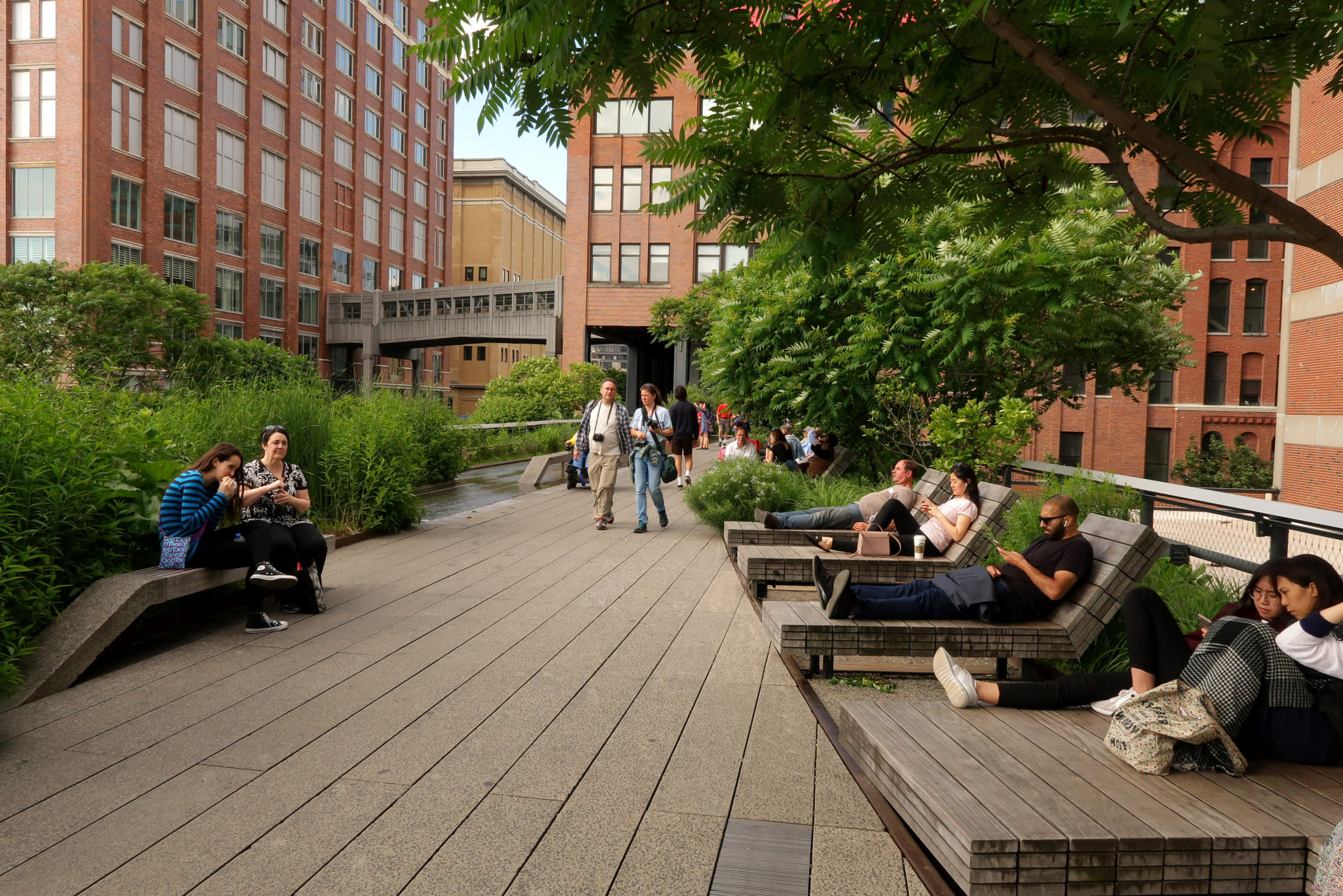 High Line, un parc urbain de Manhattan, New York.